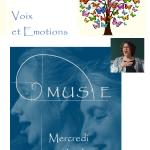 Séances à distance de Musico-Phonologie